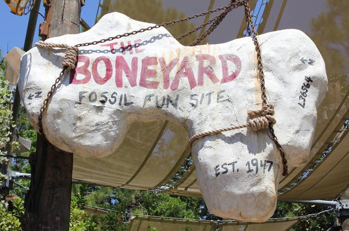 The Boneyard sign in Disney's Animal Kingdom