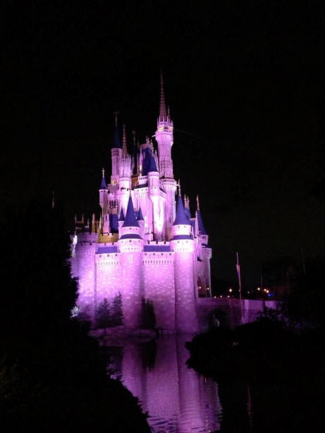 Cinderella Castle at Night