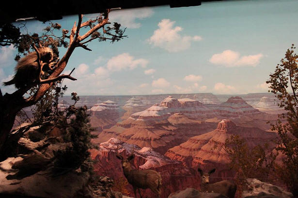 Grand Canyon Concourse at Disneyland