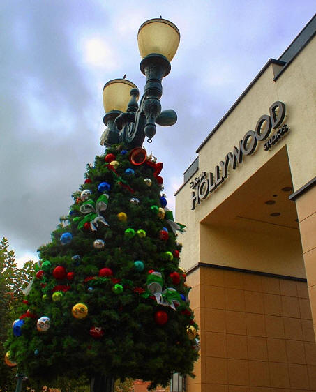 Hollywood Studios tree