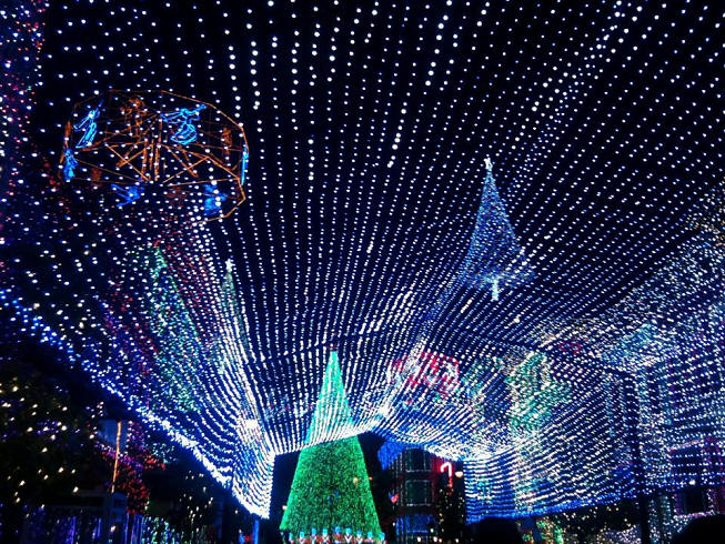 Picture of the Day Osbourne Lights