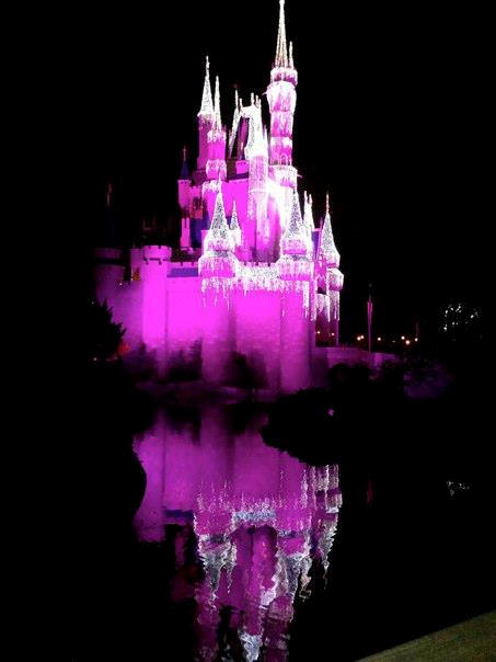 Picture of the Day Cinderella Castle lit up for the holidays