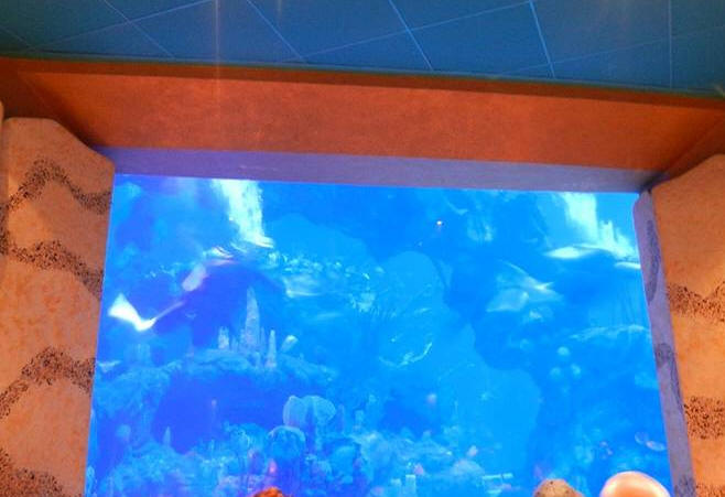 The coral Reef at Epcot